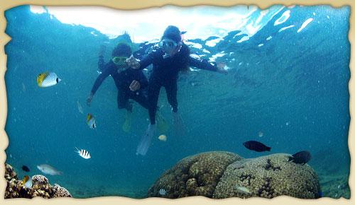 シーカヤックで行く青の洞窟シュノーケルツアーイメージ写真