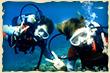 のんびり貸切体験ダイビングツアーイメージ写真